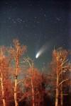 Комета Хейла-Боппа над Ельниковской рощей.